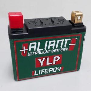 YLP07